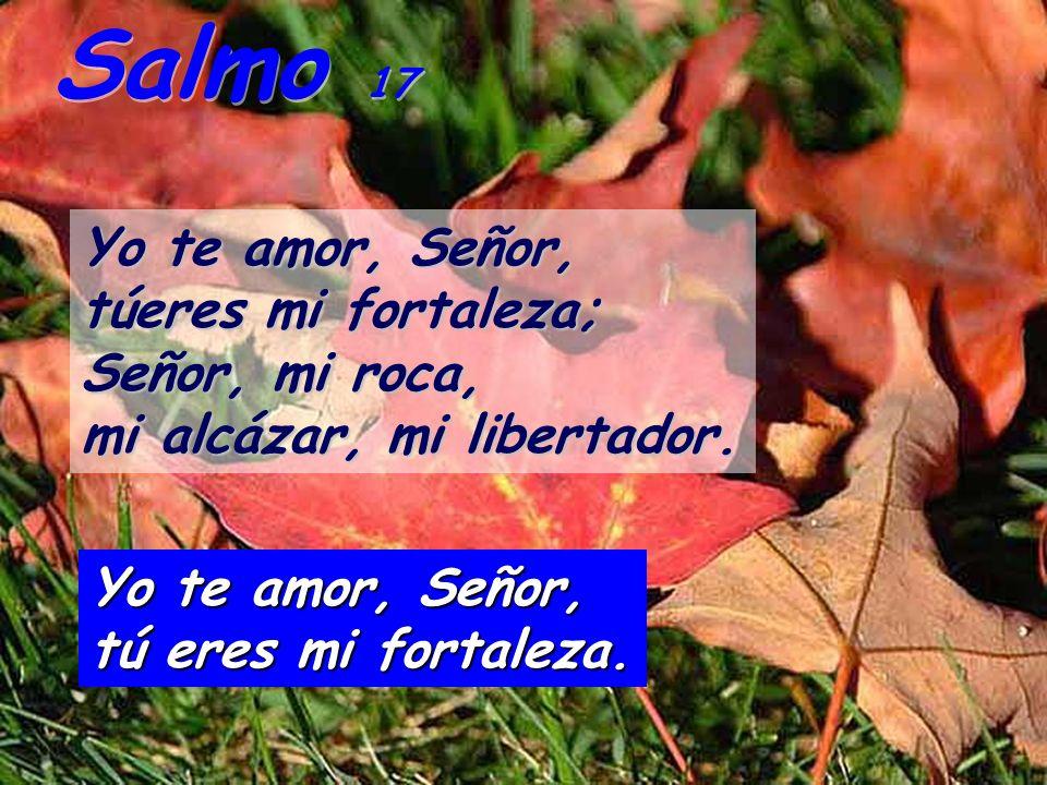 Salmo 17 Yo te amor, Señor, túeres mi fortaleza; Señor, mi roca, mi alcázar, mi libertador.