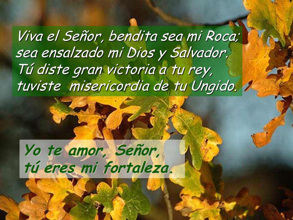 Viva el Señor, bendita sea mi Roca; sea ensalzado mi Dios y Salvador.
