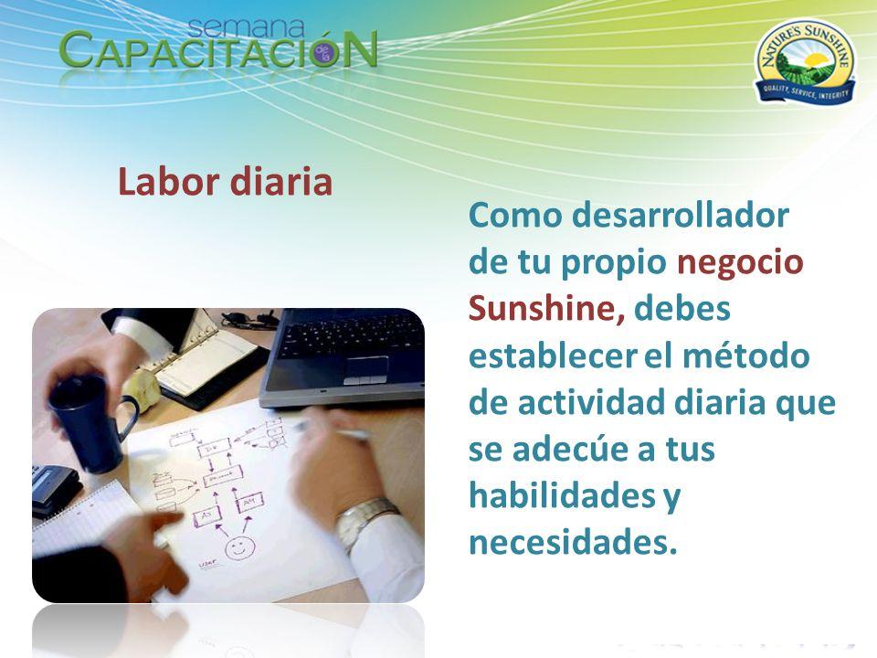 Como desarrollador de tu propio negocio Sunshine, debes establecer el método de actividad diaria que se adecúe a tus habilidades y necesidades. Labor