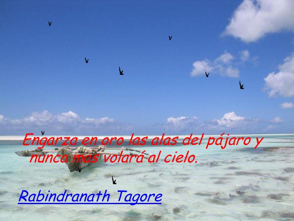 Engarza en oro las alas del pájaro y nunca mas volará al cielo. Rabindranath Tagore