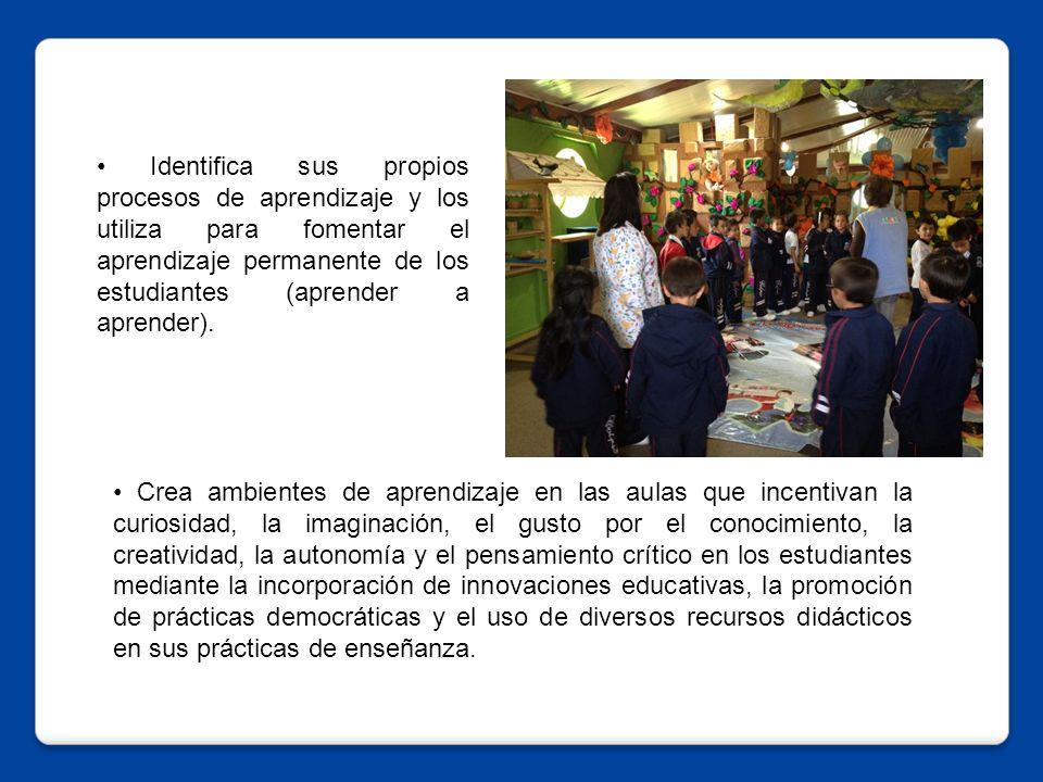 Crea ambientes de aprendizaje en las aulas que incentivan la curiosidad, la imaginación, el gusto por el conocimiento, la creatividad, la autonomía y el pensamiento crítico en los estudiantes mediante la incorporación de innovaciones educativas, la promoción de prácticas democráticas y el uso de diversos recursos didácticos en sus prácticas de enseñanza.