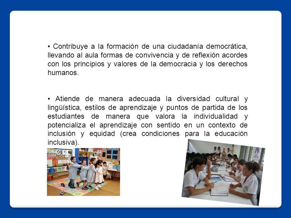 Contribuye a la formación de una ciudadanía democrática, llevando al aula formas de convivencia y de reflexión acordes con los principios y valores de la democracia y los derechos humanos.