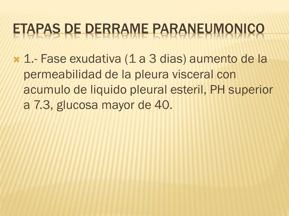 1.- Fase exudativa (1 a 3 dias) aumento de la permeabilidad de la pleura visceral con acumulo de liquido pleural esteril, PH superior a 7.3, glucosa mayor de 40.