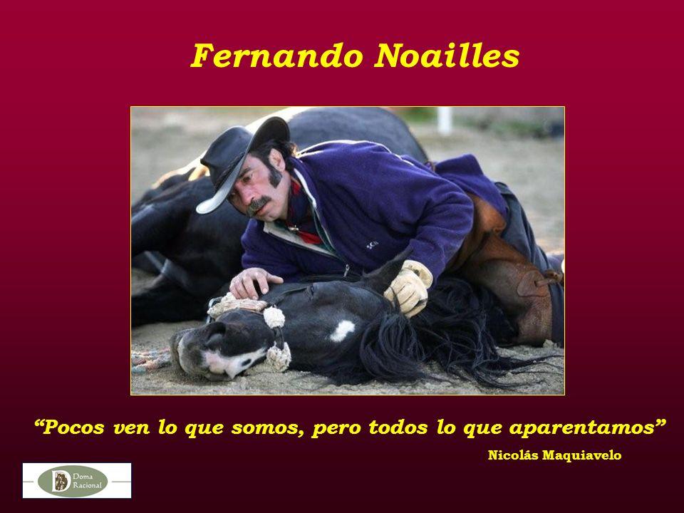 Fernando Noailles Pocos ven lo que somos, pero todos lo que aparentamos Nicolás Maquiavelo