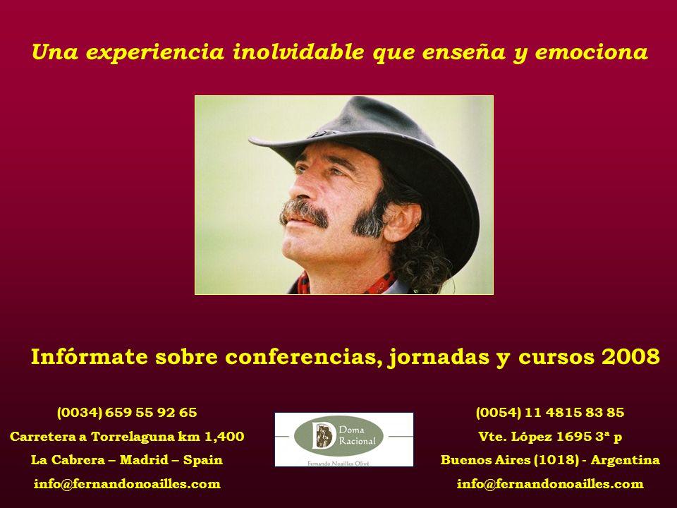 (0034) 659 55 92 65 Carretera a Torrelaguna km 1,400 La Cabrera – Madrid – Spain info@fernandonoailles.com (0054) 11 4815 83 85 Vte.