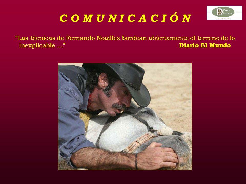 C O M U N I C A C I Ó N Las técnicas de Fernando Noailles bordean abiertamente el terreno de lo inexplicable...