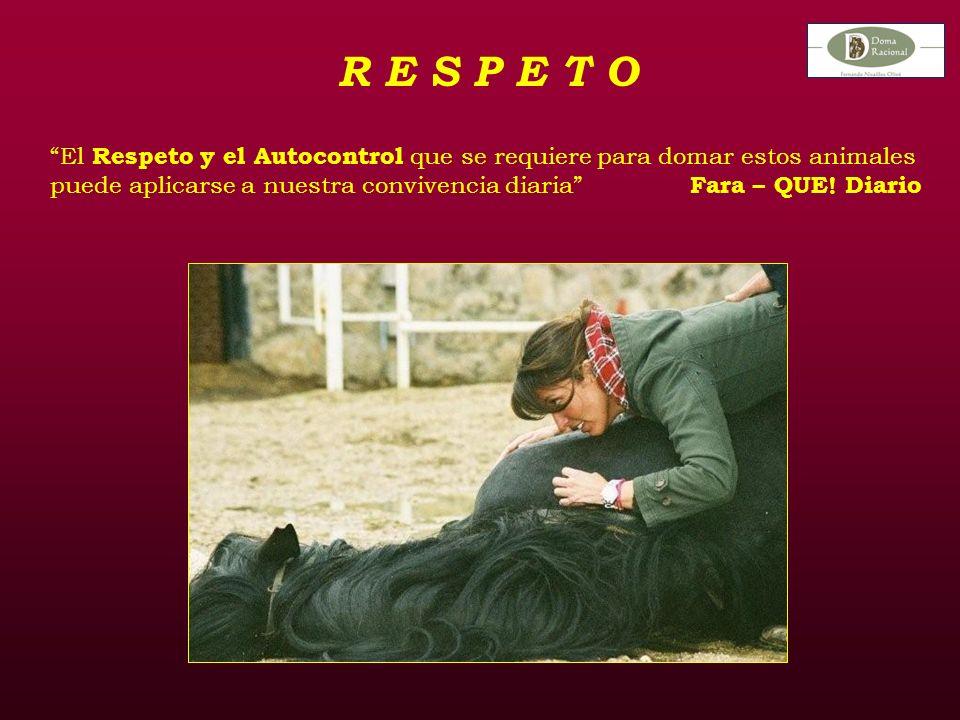 R E S P E T O El Respeto y el Autocontrol que se requiere para domar estos animales puede aplicarse a nuestra convivencia diaria Fara – QUE.