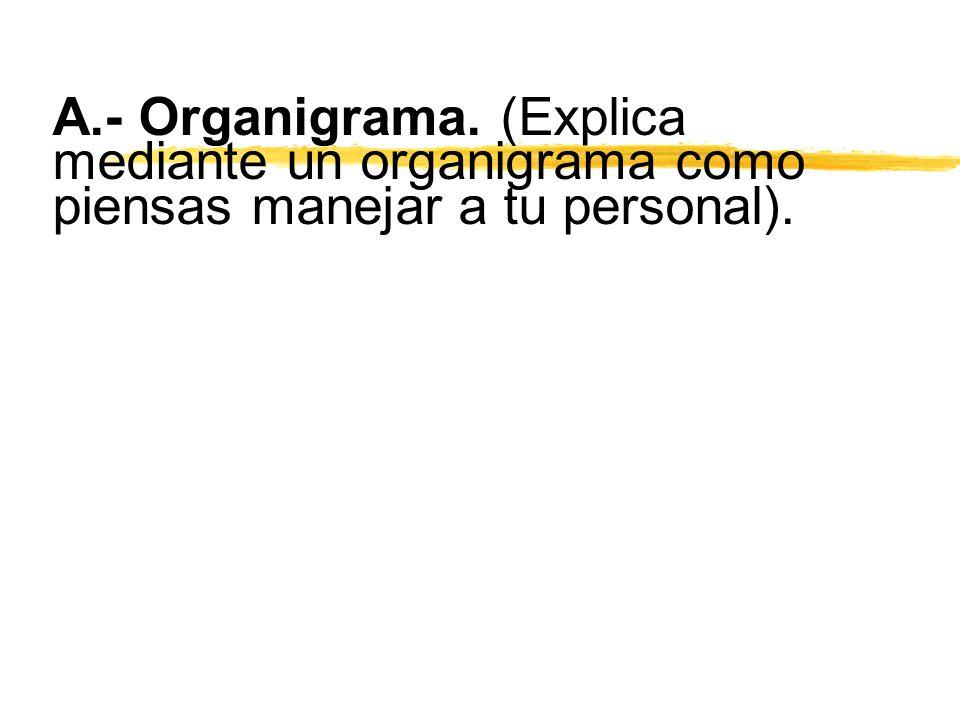 A.- Organigrama. (Explica mediante un organigrama como piensas manejar a tu personal).