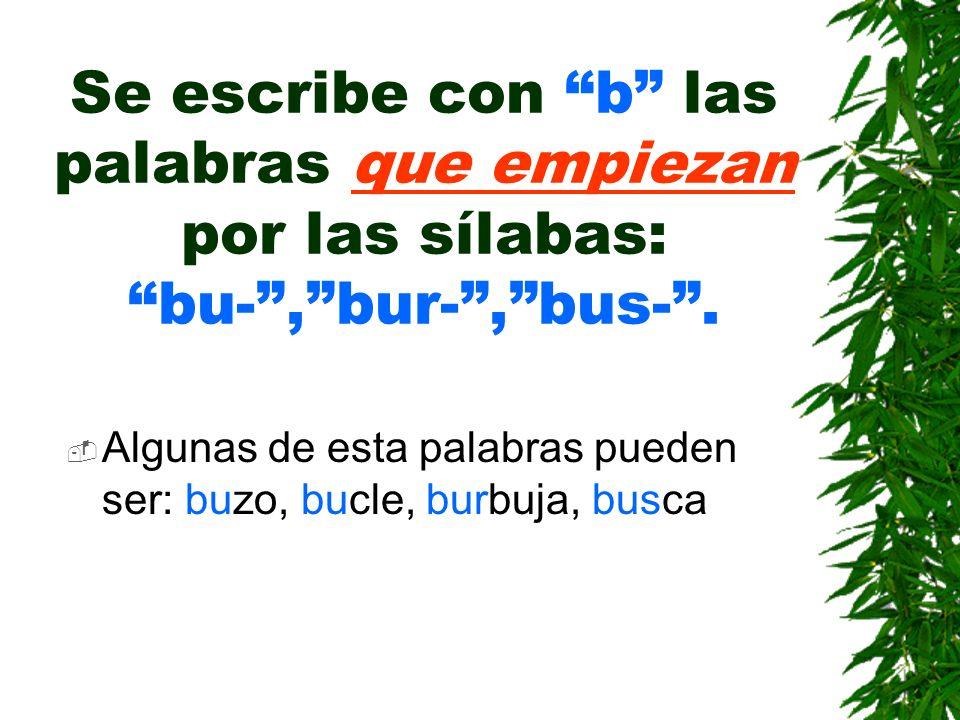 Se escribe con b las palabras que empiezan por las sílabas: bu-,bur-,bus-.