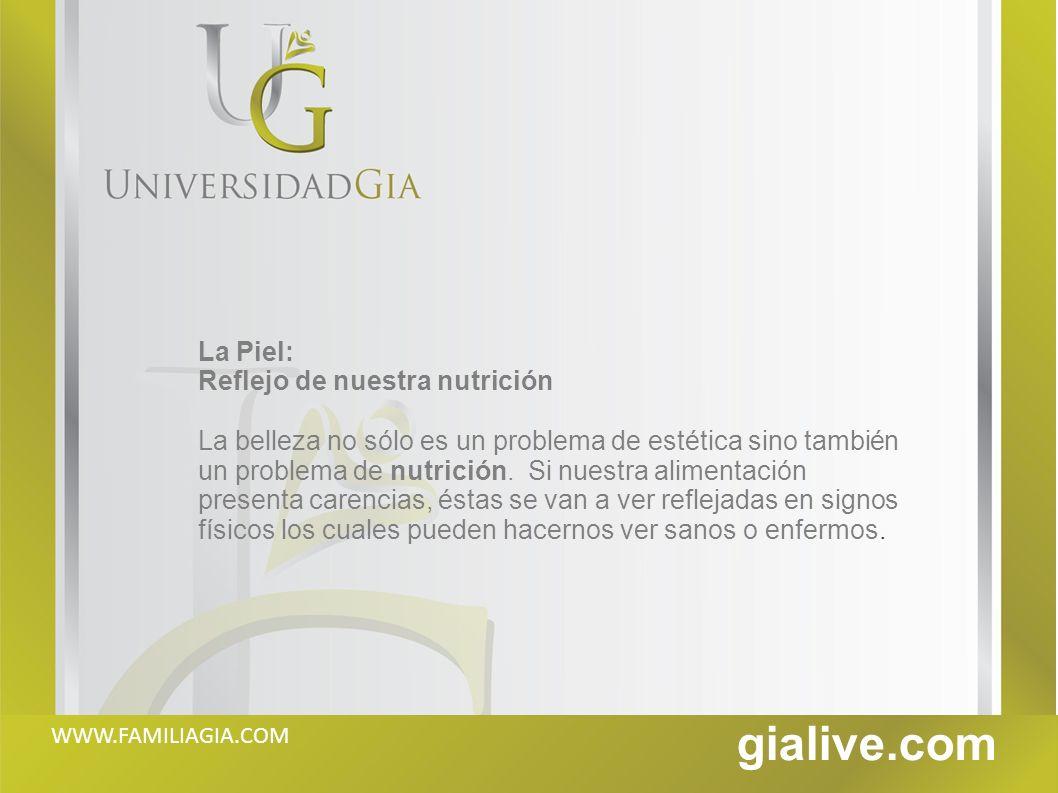 gialive.com 1.