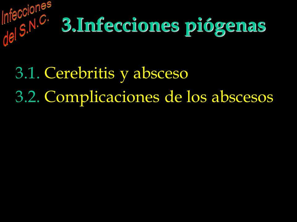 INFECCIONES DEL S.N.C. 3.Infecciones piógenas parenquimatosas 3.1. Cerebritis y absceso 3.2. Complicaciones de los abscesos INFECCIONES DEL S.N.C. 2.I