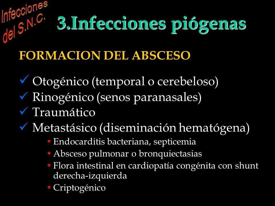 INFECCIONES DEL S.N.C. 3.Infecciones piógenas parenquimatosas FORMACION DEL ABSCESO (del Anne Osborn) Otogénico (temporal o cerebeloso) Rinogénico (se