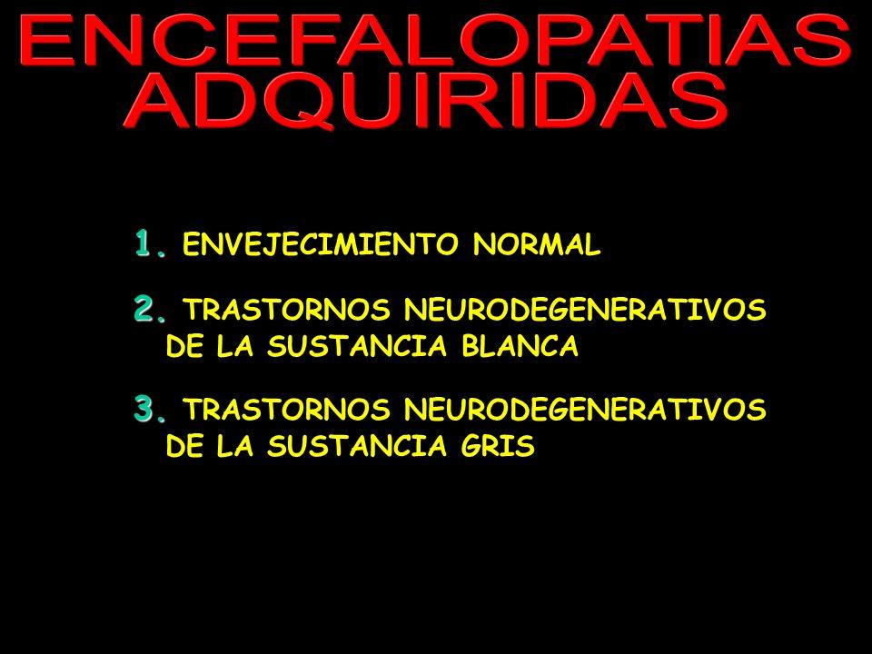 ENCEFALOPATIAS ADQUIRIDAS 1. 1. ENVEJECIMIENTO NORMAL 2. 2. TRASTORNOS NEURODEGENERATIVOS DE LA SUSTANCIA BLANCA 3. 3. TRASTORNOS NEURODEGENERATIVOS D