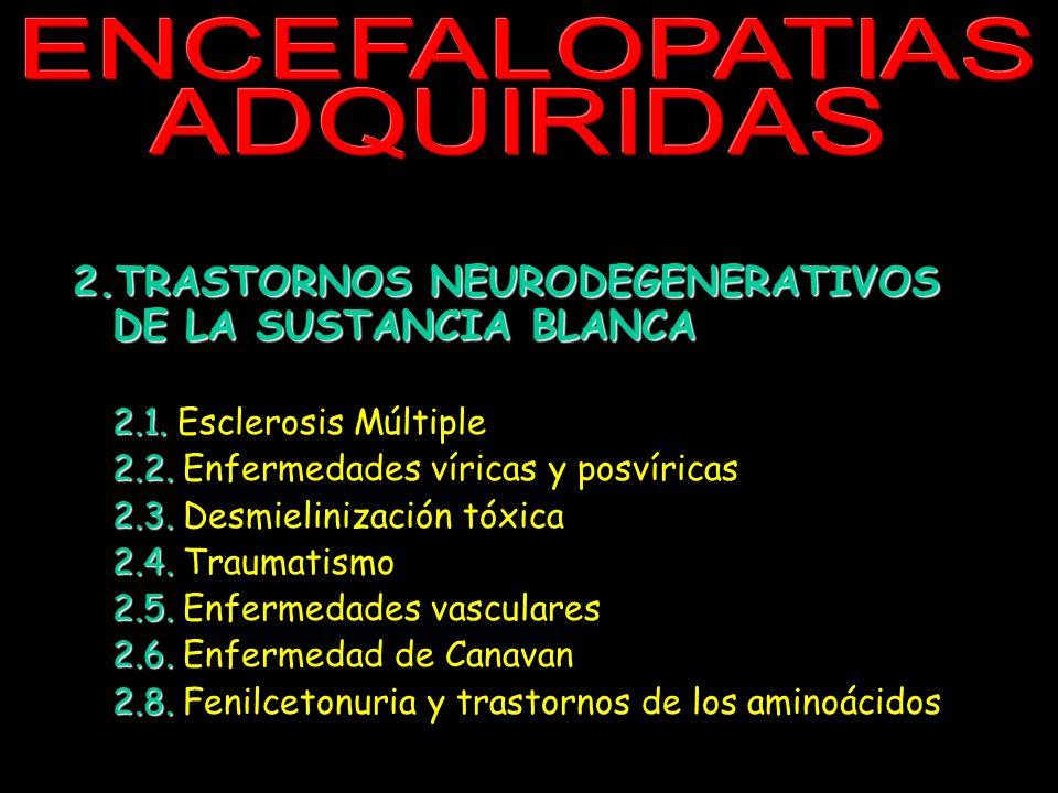 EN CE FAL OP ATI AS AD QU IRI DA S. 2.TRASTORNOS NEURODEGENERATIVOS DE LA SUSTANCIA BLANCA 2.1. 2.1. Esclerosis Múltiple 2.2. 2.2. Enfermedades vírica