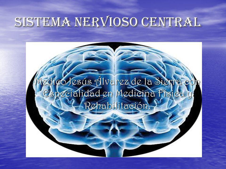 SISTEMA NERVIOSO CENTRAL Medico Jesús Álvarez de la Sierra con Especialidad en Medicina Física y Rehabilitación.