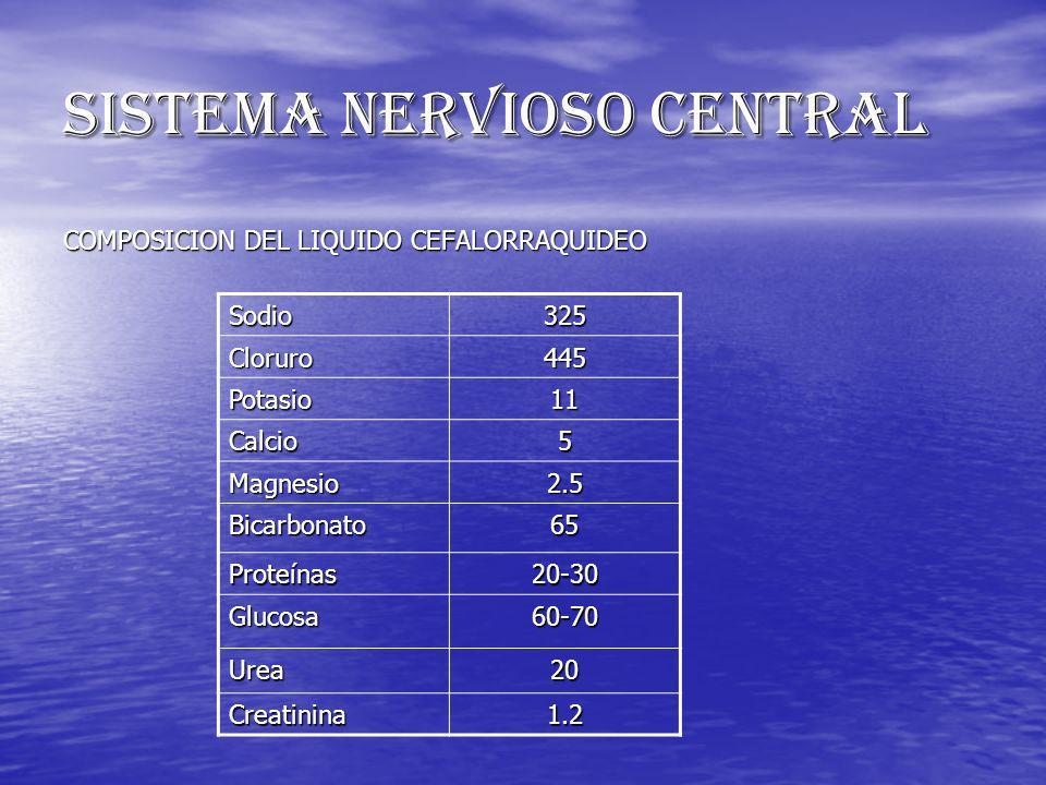 SISTEMA NERVIOSO CENTRAL COMPOSICION DEL LIQUIDO CEFALORRAQUIDEO Sodio325 Cloruro445 Potasio11 Calcio5 Magnesio2.5 Bicarbonato65 Proteínas20-30 Glucos