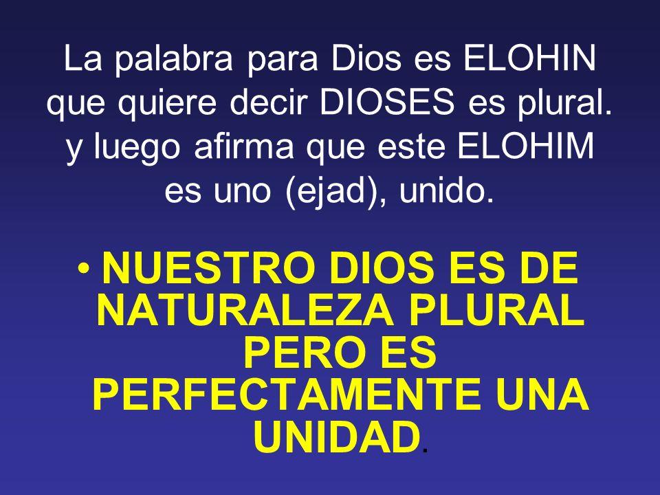 La palabra para Dios es ELOHIN que quiere decir DIOSES es plural. y luego afirma que este ELOHIM es uno (ejad), unido. NUESTRO DIOS ES DE NATURALEZA P