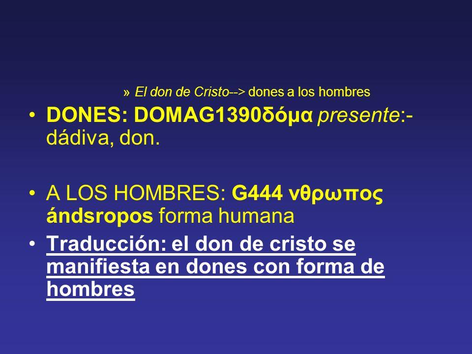 »El don de Cristo--> dones a los hombres DONES: DOMAG1390δόμα presente:- dádiva, don. A LOS HOMBRES: G444 νθρωπος ándsropos forma humana Traducción: e