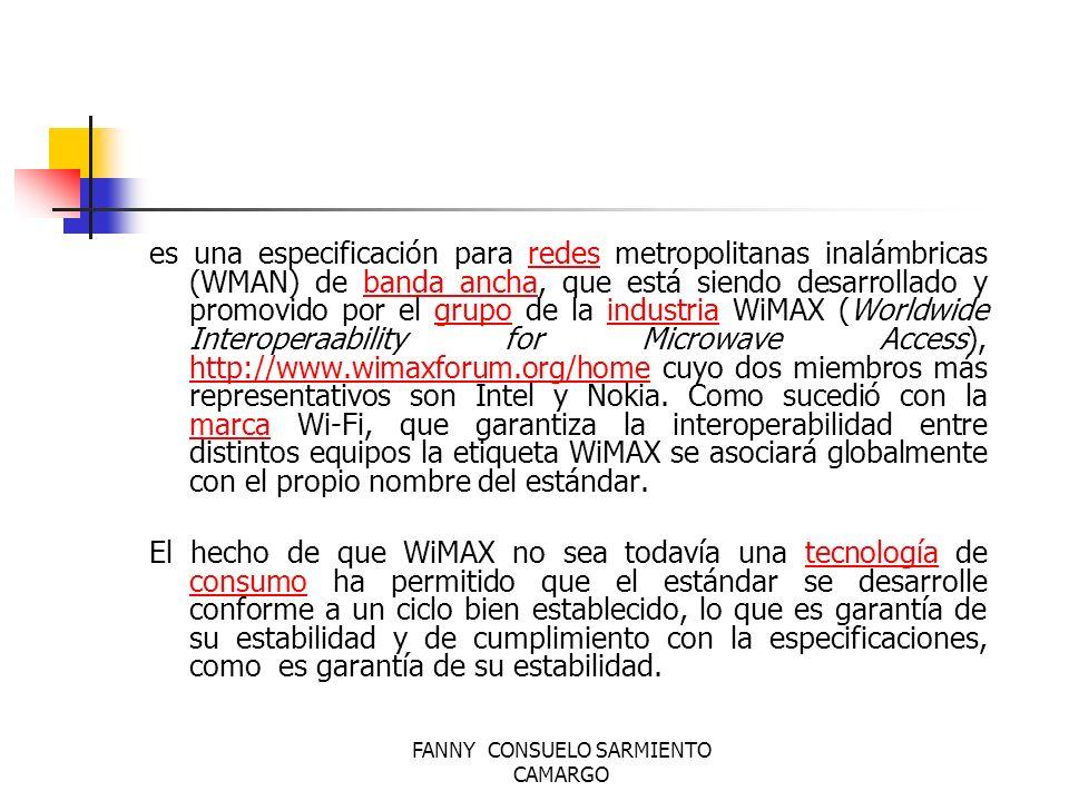 FANNY CONSUELO SARMIENTO CAMARGO WiMAX