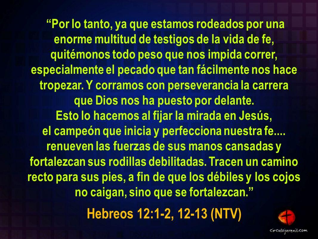 Por lo tanto, ya que estamos rodeados por una enorme multitud de testigos de la vida de fe, quitémonos todo peso que nos impida correr, especialmente