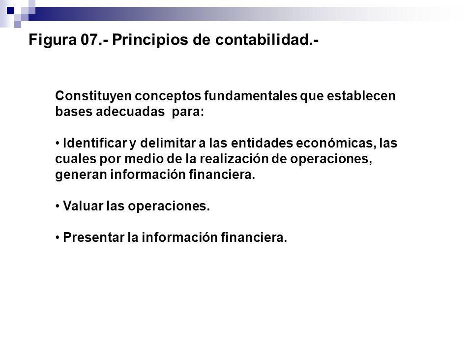 Figura 07.- Principios de contabilidad.- Constituyen conceptos fundamentales que establecen bases adecuadas para: Identificar y delimitar a las entida