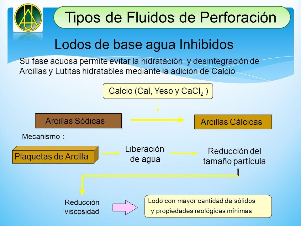 Lodos de base agua Inhibidos Su fase acuosa permite evitar la hidratación y desintegración de Arcillas y Lutitas hidratables mediante la adición de Ca