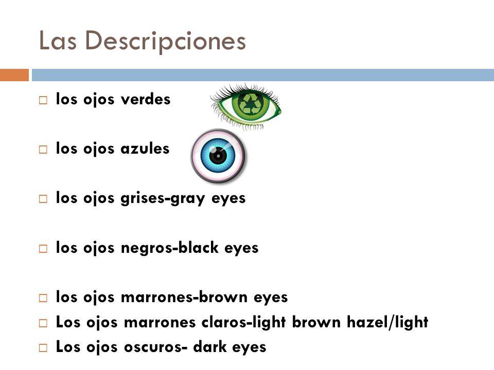 Las Descripciones los ojos verdes los ojos azules los ojos grises-gray eyes los ojos negros-black eyes los ojos marrones-brown eyes Los ojos marrones