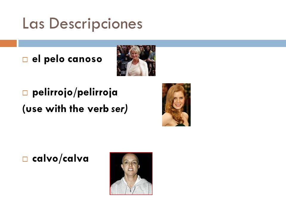 Las Descripciones el pelo canoso pelirrojo/pelirroja (use with the verb ser) calvo/calva