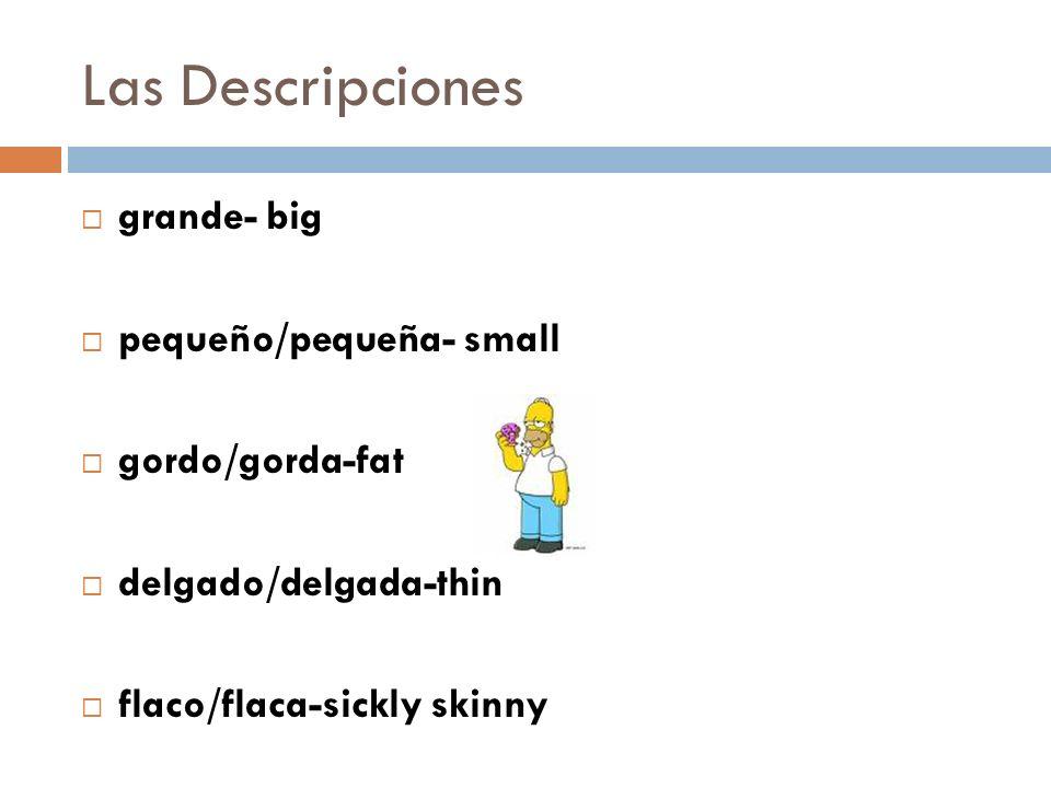 Las Descripciones grande- big pequeño/pequeña- small gordo/gorda-fat delgado/delgada-thin flaco/flaca-sickly skinny