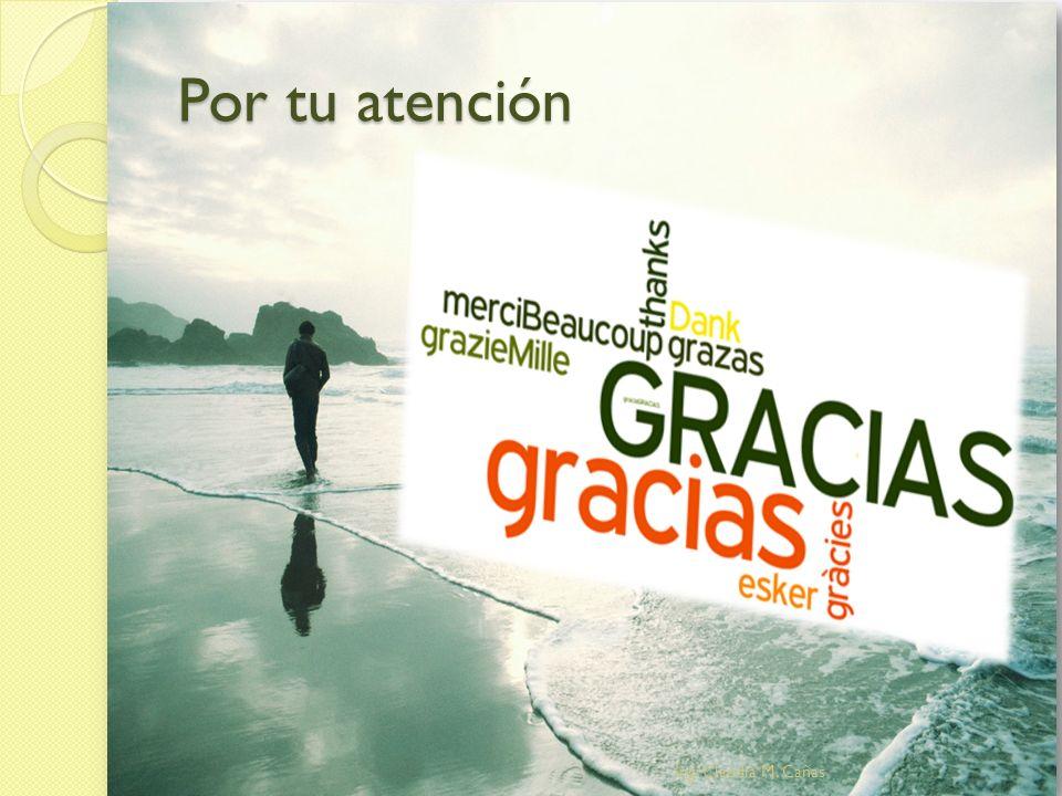 Por tu atención Ing. Claudia M. Cañas