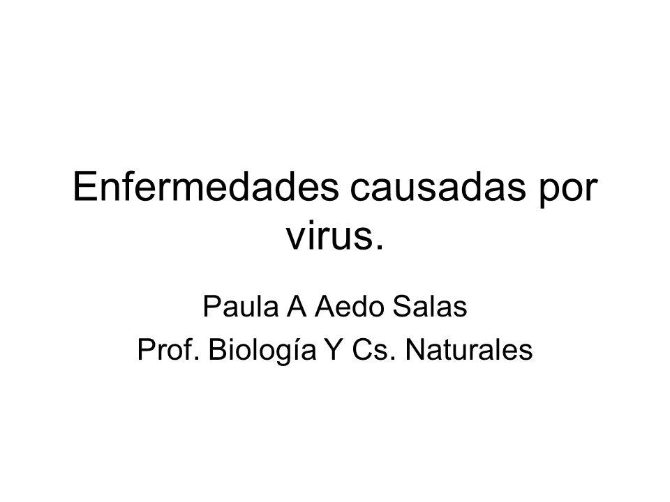 Enfermedades causadas por virus. Paula A Aedo Salas Prof. Biología Y Cs. Naturales