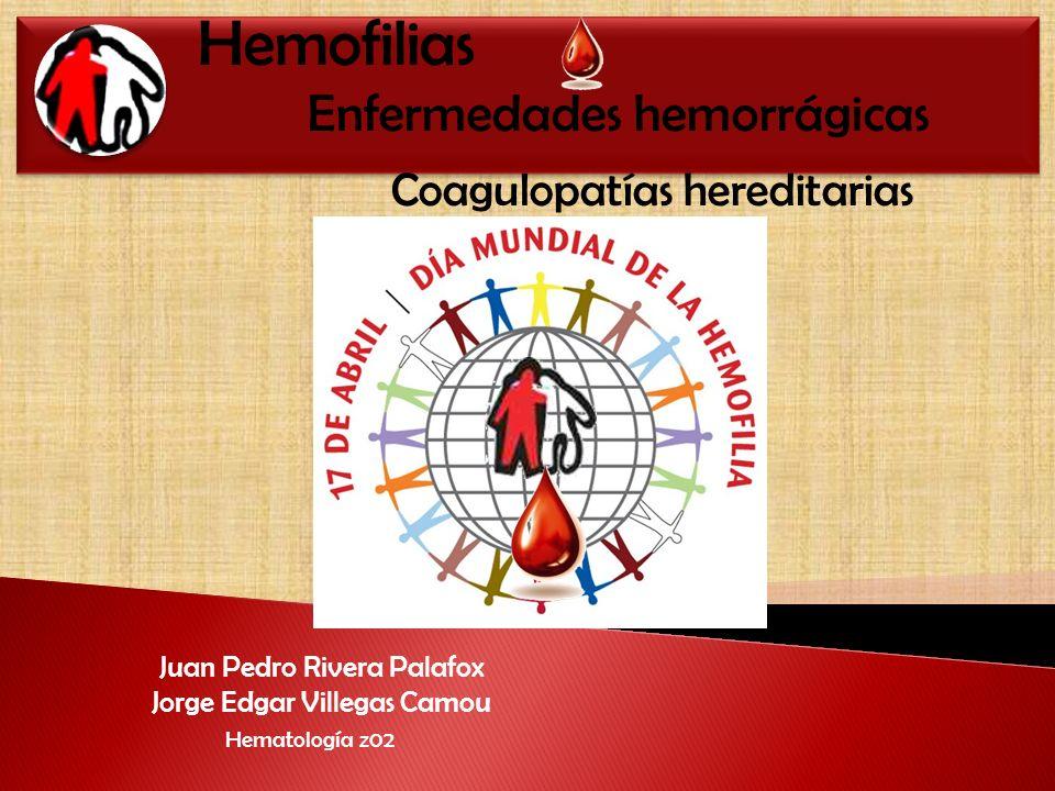 Juan Pedro Rivera Palafox Jorge Edgar Villegas Camou Hematología z02 Hemofilias Enfermedades hemorrágicas Coagulopatías hereditarias