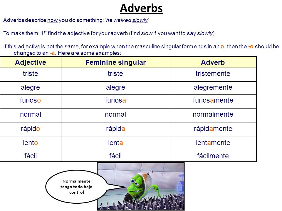 Adverbs describe how you do something: he walked slowly To make them: 1 st find the adjective for your adverb (find slow if you want to say slowly) If this adjective is not the same, for example when the masculine singular form ends in an o, then the -o should be changed to an -a.