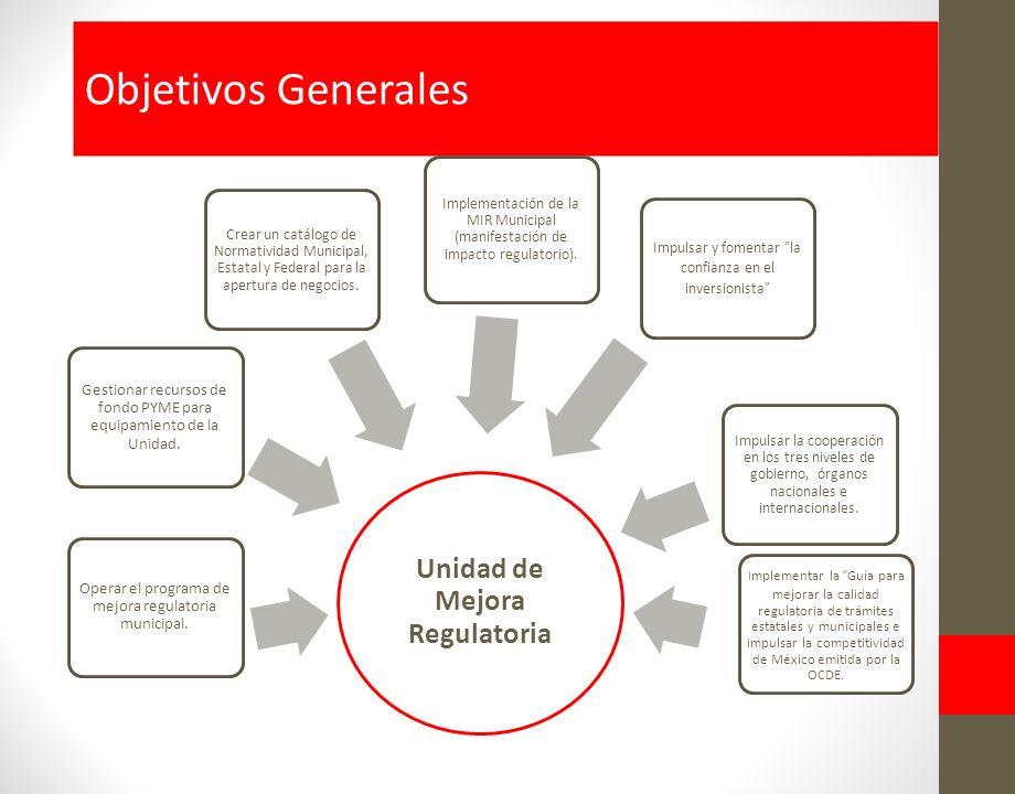 Objetivos Generales Unidad de Mejora Regulatoria Implementar la Guía para mejorar la calidad regulatoria de trámites estatales y municipales e impulsar la competitividad de México emitida por la OCDE.