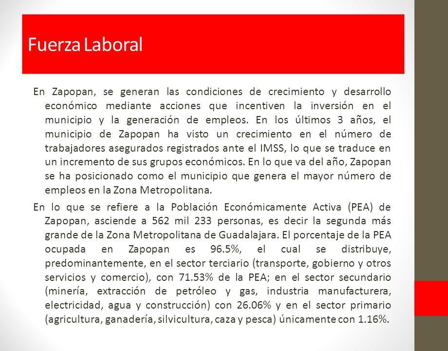 En Zapopan, se generan las condiciones de crecimiento y desarrollo económico mediante acciones que incentiven la inversión en el municipio y la generación de empleos.