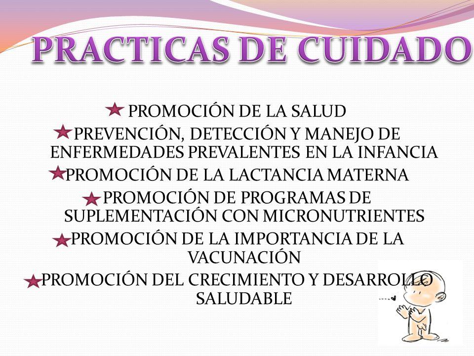 PROMOCIÓN DE LA SALUD PREVENCIÓN, DETECCIÓN Y MANEJO DE ENFERMEDADES PREVALENTES EN LA INFANCIA PROMOCIÓN DE LA LACTANCIA MATERNA PROMOCIÓN DE PROGRAMAS DE SUPLEMENTACIÓN CON MICRONUTRIENTES PROMOCIÓN DE LA IMPORTANCIA DE LA VACUNACIÓN PROMOCIÓN DEL CRECIMIENTO Y DESARROLLO SALUDABLE