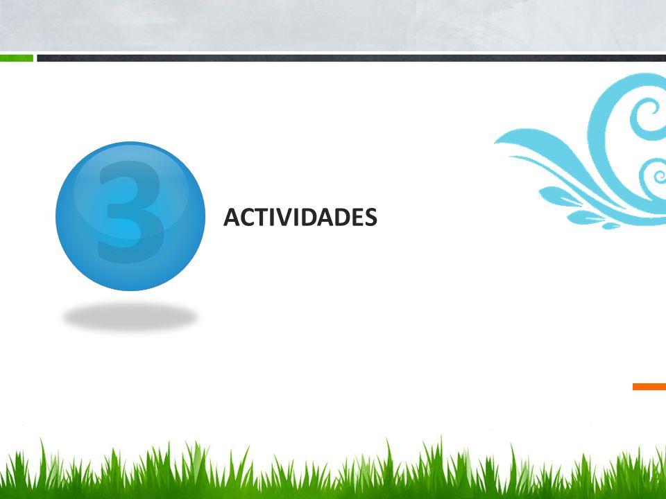 3 ACTIVIDADES
