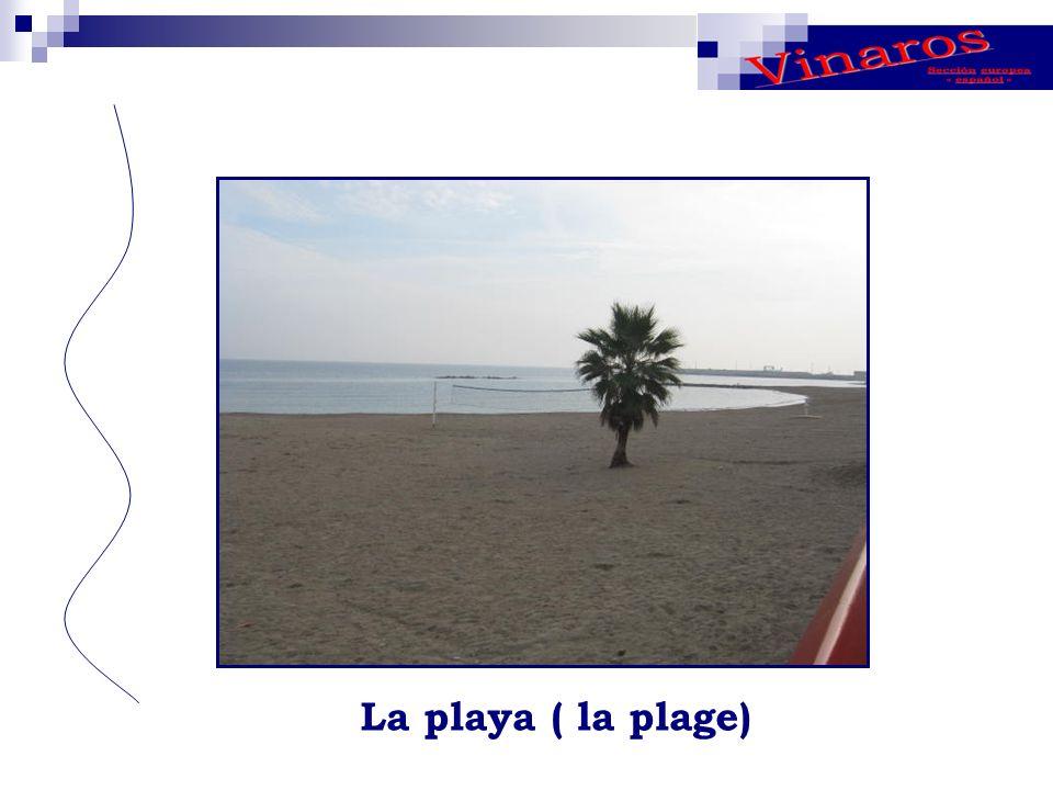 La playa ( la plage)