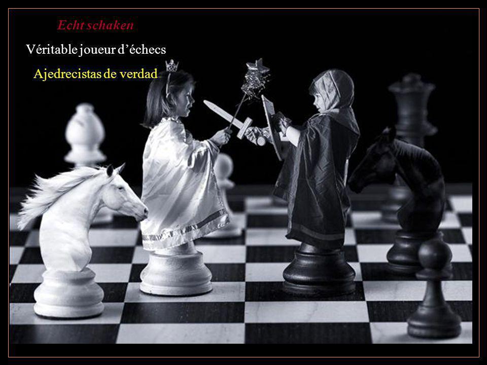 Echt schaken Véritable joueur déchecs Ajedrecistas de verdad