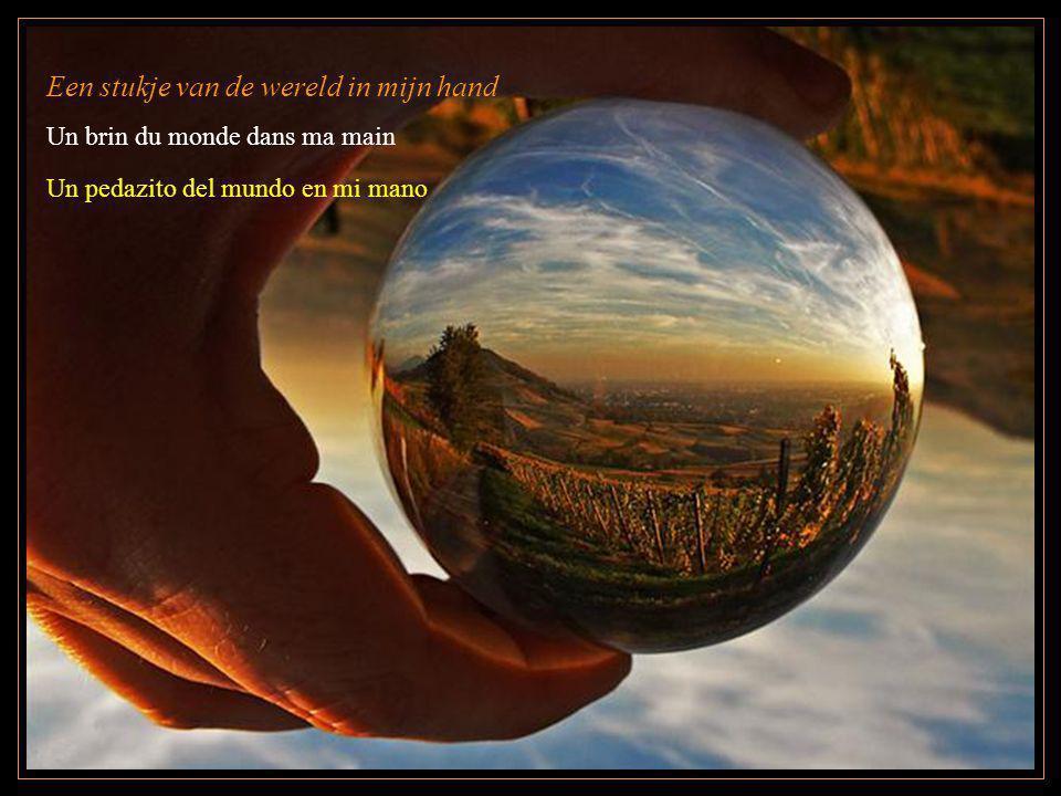 Een stukje van de wereld in mijn hand Un brin du monde dans ma main Un pedazito del mundo en mi mano