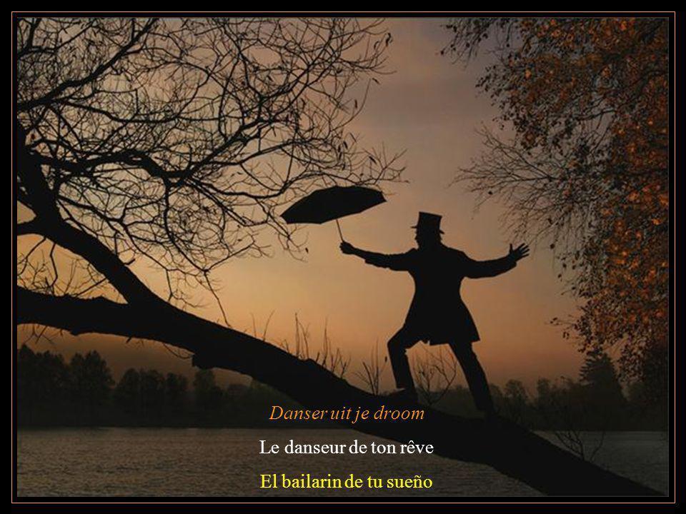 Danser uit je droom Le danseur de ton rêve El bailarin de tu sueño