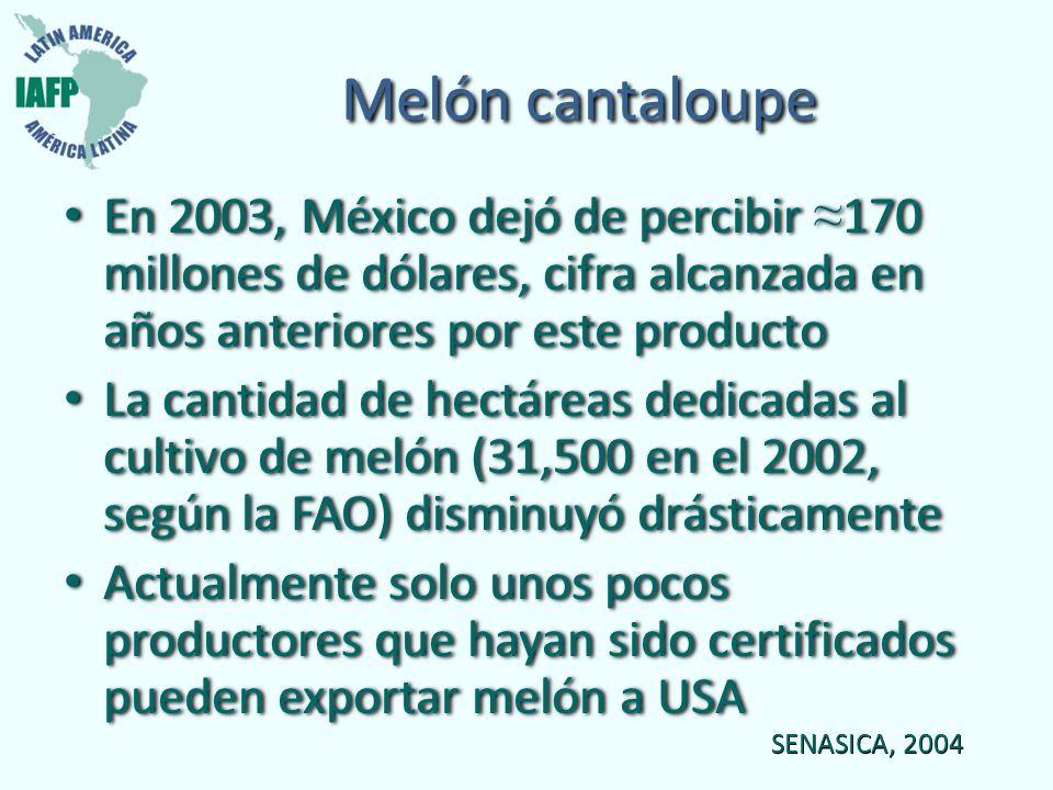 Melón cantaloupe En 2003, México dejó de percibir 170 millones de dólares, cifra alcanzada en años anteriores por este producto La cantidad de hectáre
