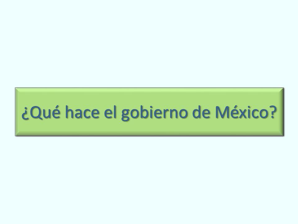 ¿Qué hace el gobierno de México?