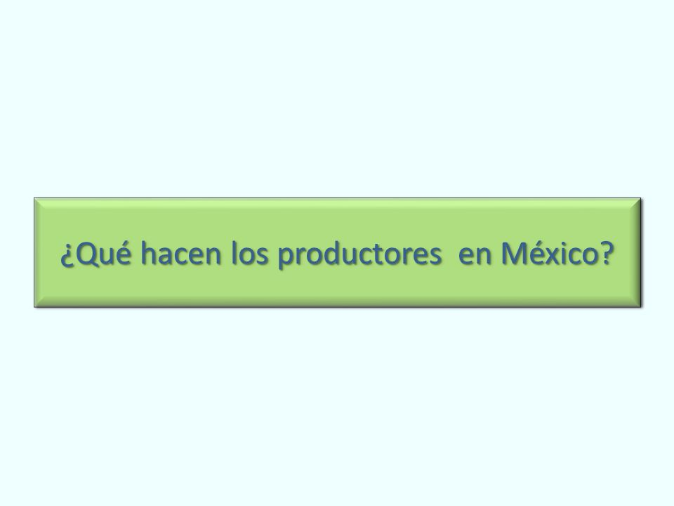 ¿Qué hacen los productores en México?
