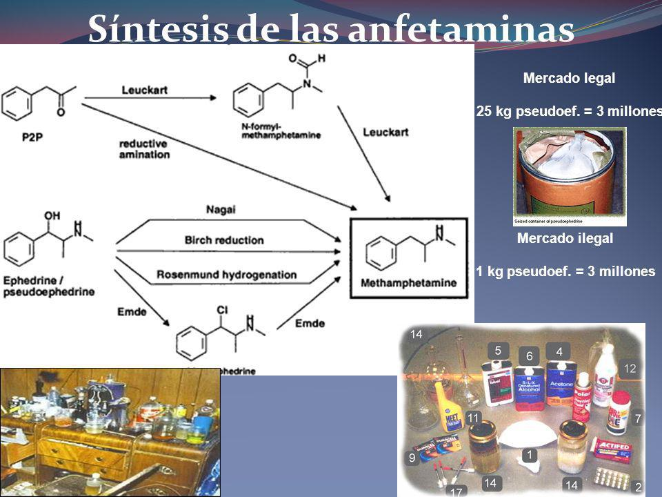 Síntesis de las anfetaminas Mercado legal 25 kg pseudoef. = 3 millones Mercado ilegal 1 kg pseudoef. = 3 millones
