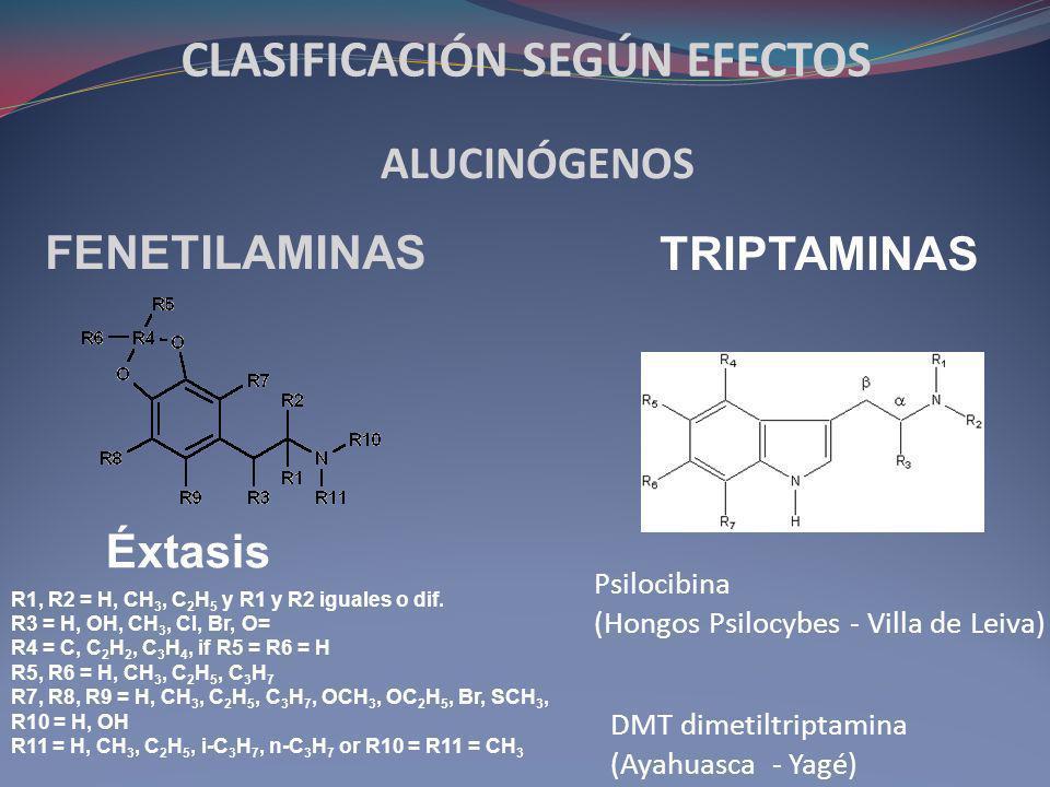 Antecedentes del uso de psicoactivos Alcohol: Neolítico 7.000 ADC Adormidera o Amapola (papaverum somniferum).