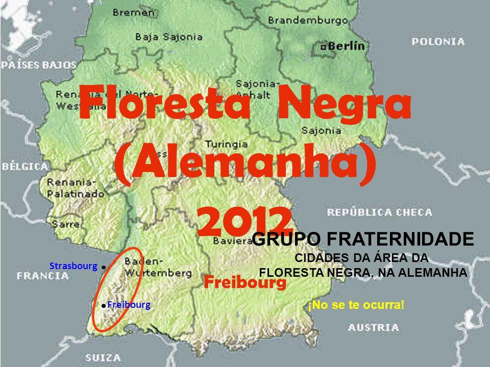 Floresta Negra (Alemanha) 2012 Freibourg ¡No se te ocurra.