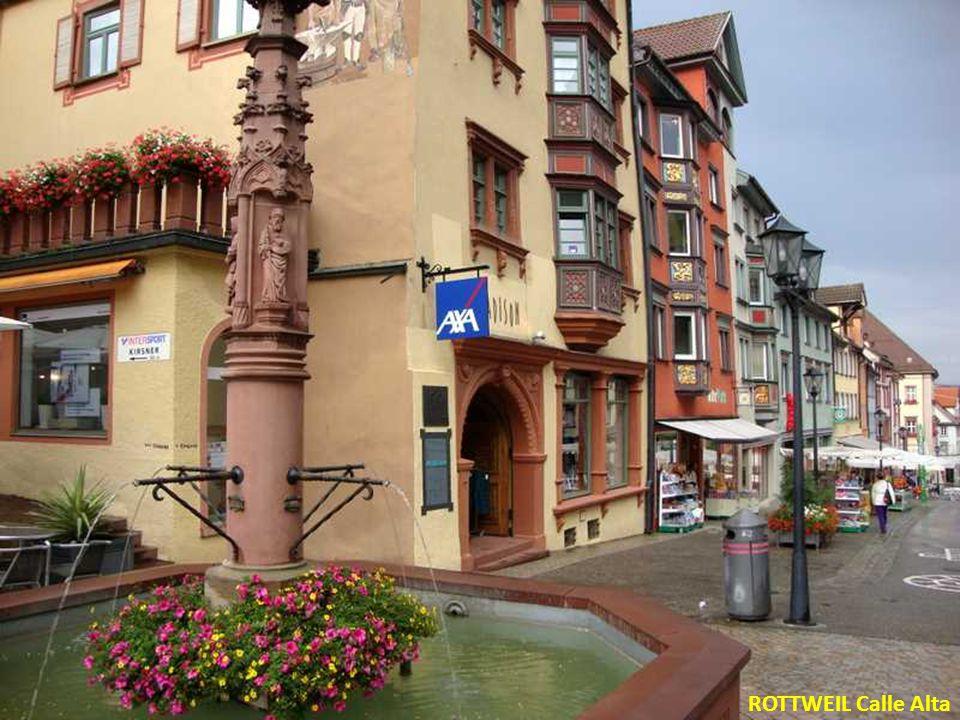 ROTTWEIL Calle Alta