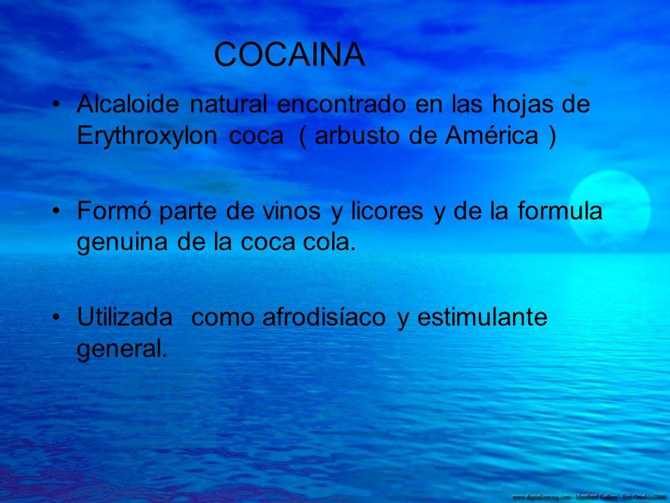 COCAINA Alcaloide natural encontrado en las hojas de Erythroxylon coca ( arbusto de América ) Formó parte de vinos y licores y de la formula genuina d