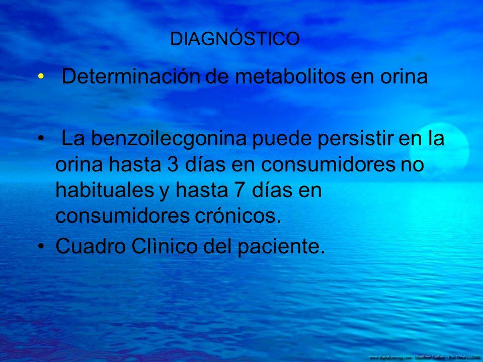 DIAGNÓSTICO Determinación de metabolitos en orina La benzoilecgonina puede persistir en la orina hasta 3 días en consumidores no habituales y hasta 7
